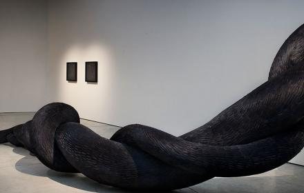 LURE by Kate MccGwire at The Gallery, Winchester Discovery Centre