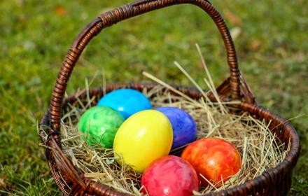 Coloured eggs in a basket