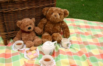 Teddy Bears on a picnic blanket